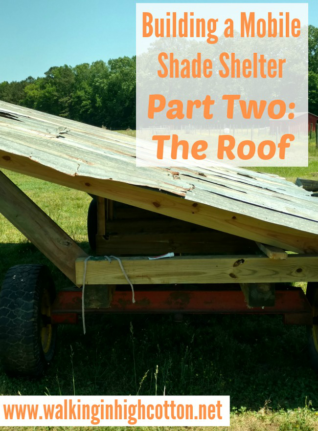 Building A Mobile Shade Shelter (Part Two) The Roof...for pasture based, rotational grazing livestock via Walking in High Cotton