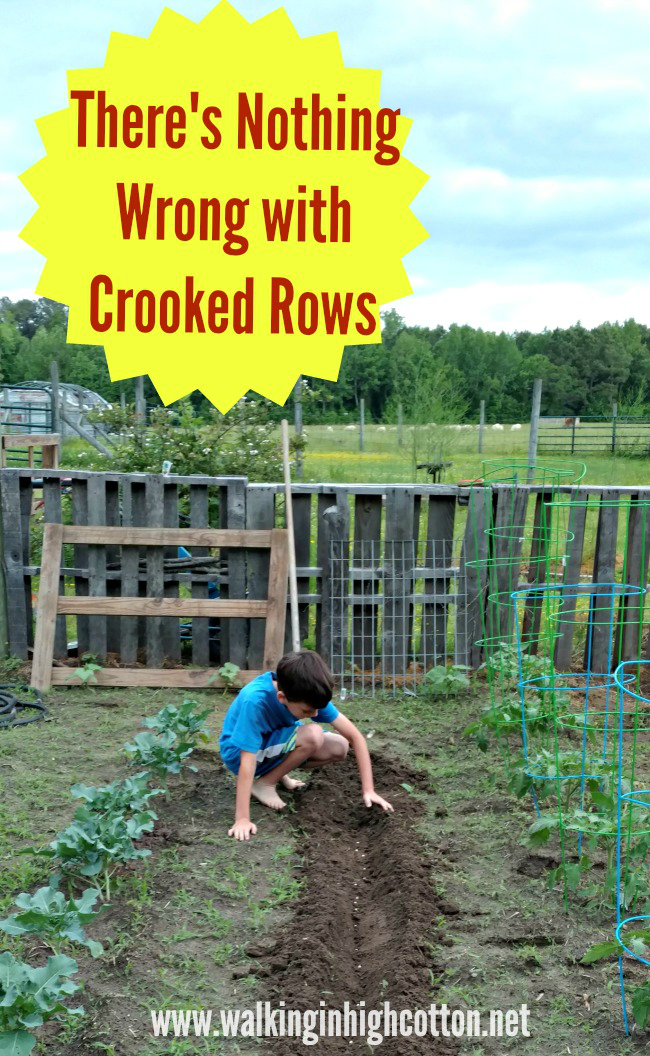 Don't let your Pin-perfect visions keep you from seeing the REAL point of gardening with kids ... There's Nothing Wrong with Crooked Rows via Walking in High Cotton