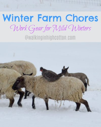 Work Gear for winter farm chores in mild climates, where you get a little bit of snow and ice, but nothing major. No snow pants and boots, just layers of everyday work gear.....via Walking in High Cotton
