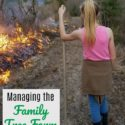Controlled Burn...managing the family tree farm with prescribed burning. via Walking in High Cotton