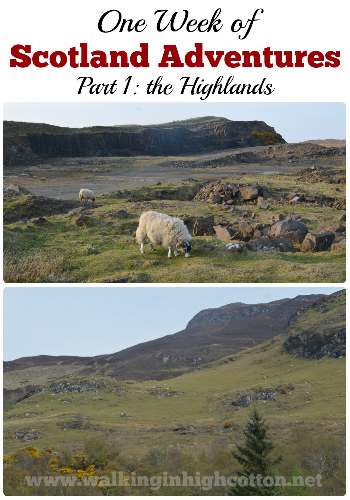 A recap of our 1 week in Scotland in April--Part One, our time in the Highlands. via Walking in High Cotton