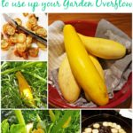 50+ Recipes for Summer Squash to Use Up Your Garden Overflow!