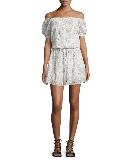 Janell Off-the-Shoulder Silk Lace Dress