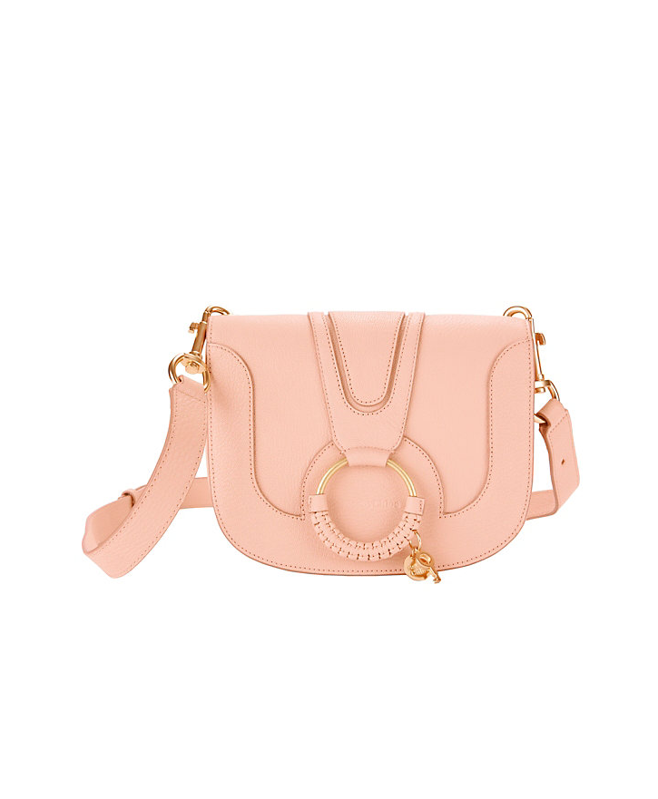 Circle Hardware Flap Bag