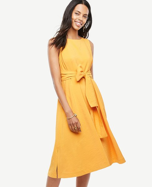 Petite Sleeveless Belted Dress