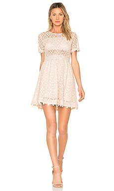 Lace Fit & Flare Dress in Blush