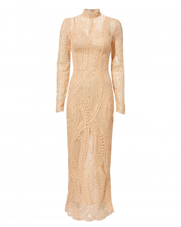 Crystal Embroidered Lace Column Gown