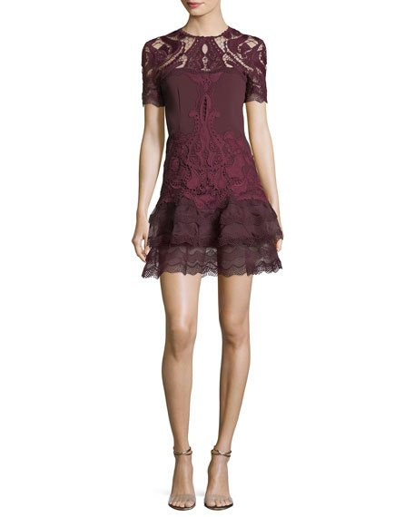 Jonathan Simkhai Embroidered Lace Fit-and-Flare Crepe Mini Dress