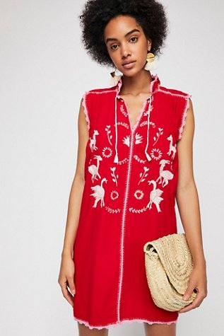 Embroidered Oaxaca Mini Dress