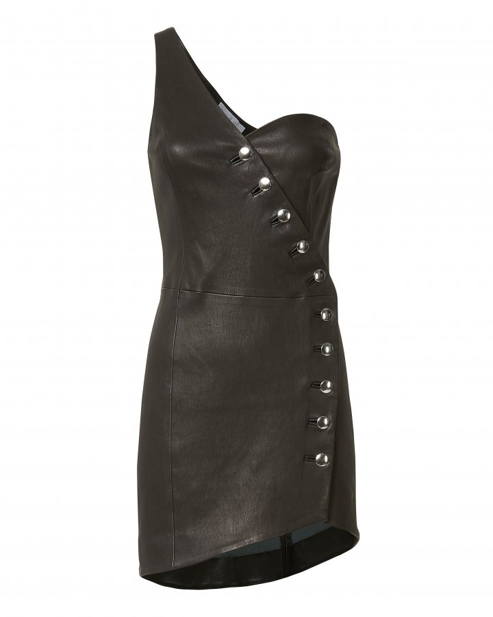 Clemay Leather Dress