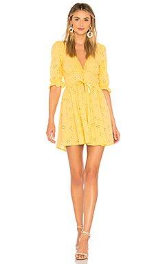 Spring Eyelet Swing Dress                                             For Love & Lemons