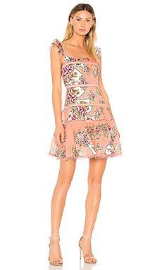 Naomi Flutter Sleeve Dress                                             aijek