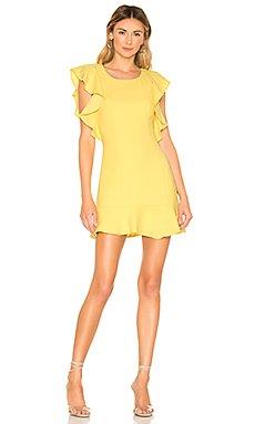 Ruffle Sleeve Mini Dress                     BCBGeneration
