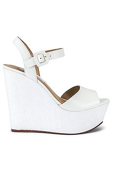 Citrus Wedge                     Steve Madden