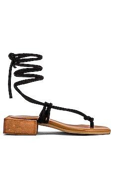 Palm Sandal                     ALOHAS