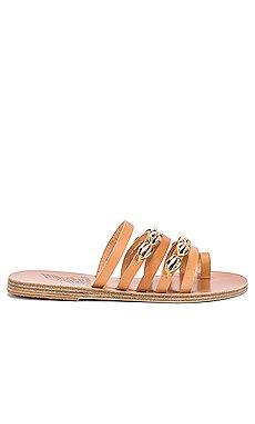 Niki Gold Shells Sandal                     Ancient Greek Sandals