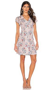 Kirstan Mini Dress                     Velvet by Graham & Spencer