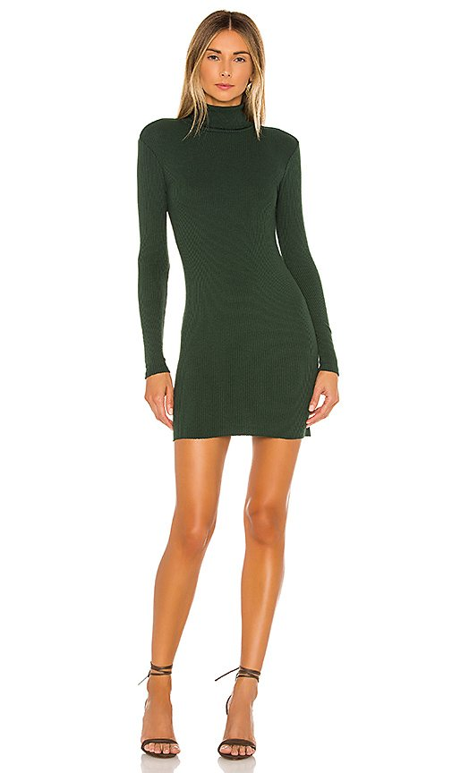 Rib Turtleneck Mini Dress