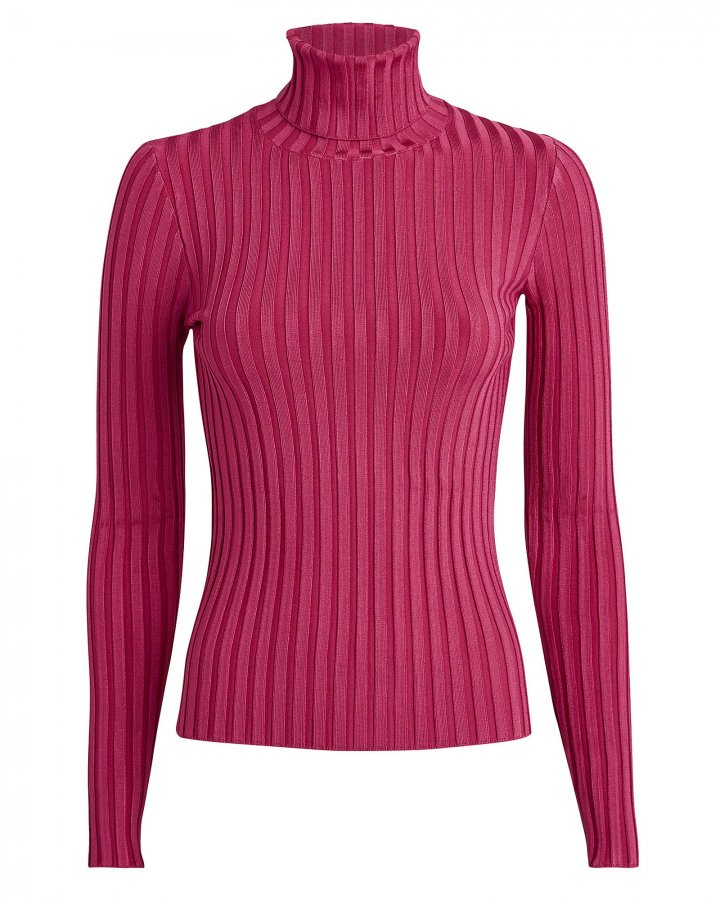 Nellie Rib Knit Turtleneck