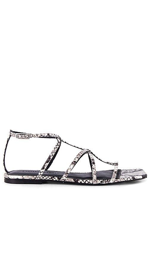 Fedora Sandal