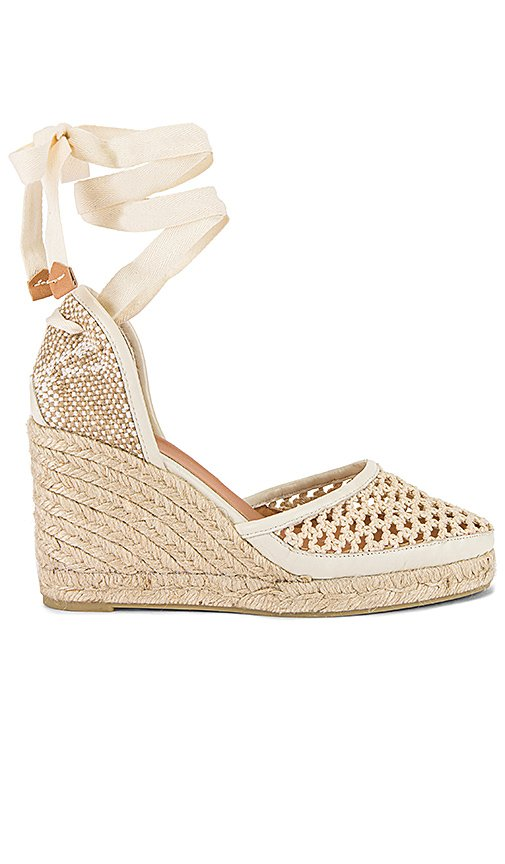 Carola Wedge