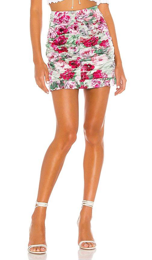 Robin Mini Skirt