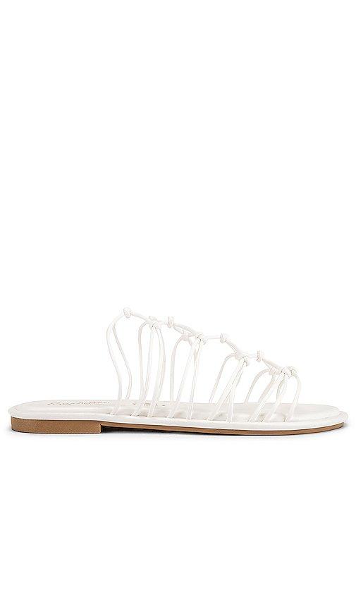 Authentic Sandal