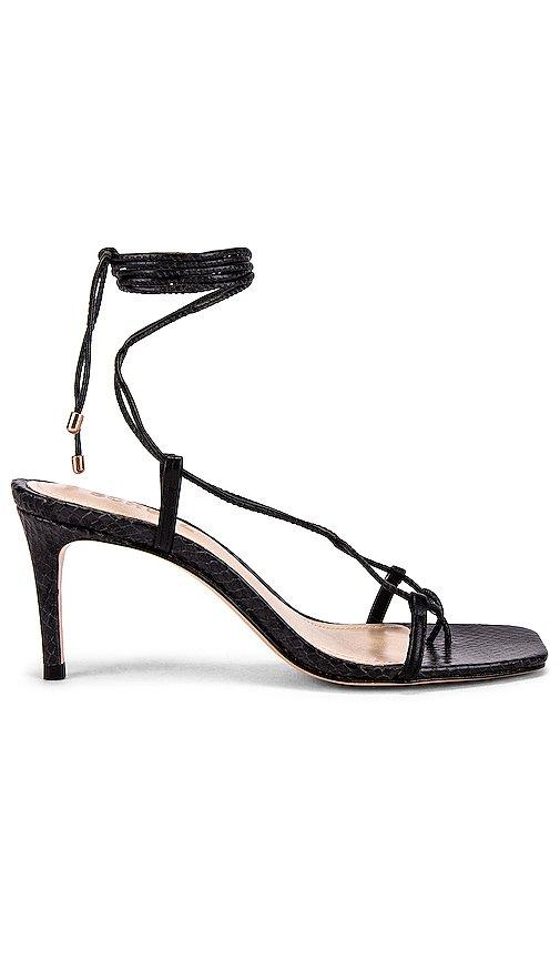 Antosha Strappy Sandal