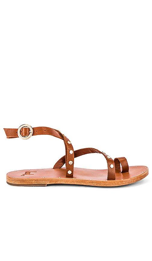 Lorikeet Sandal