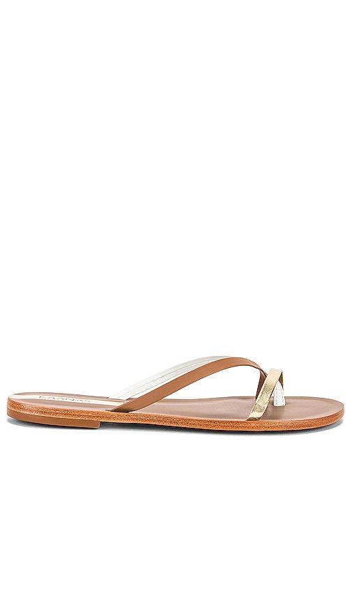 Boa Vista Sandal