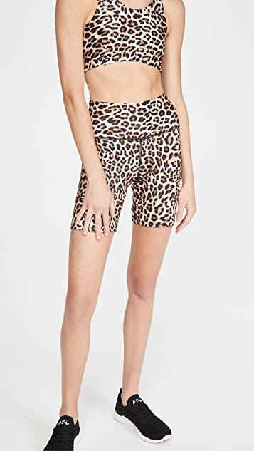 Wild Biker Shorts