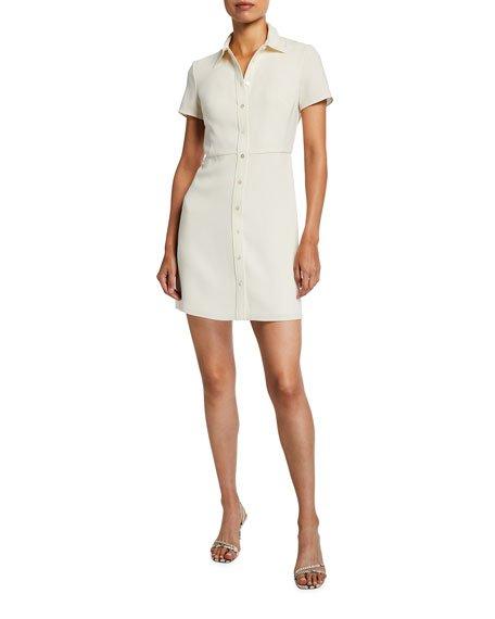 Short-Sleeve Button-Down Dress