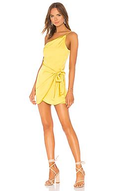 Karen Mini Dress                                             Lovers + Friends