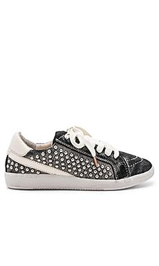 Nino Sneaker                                             Dolce Vita