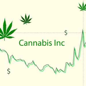 4 Key Tips for Choosing the Best Pot Stocks