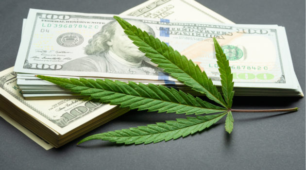 5 Things to Look for When Choosing a Pot Stock