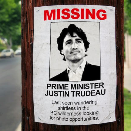 prime minister of canada peire trudeu essay He was the 15th prime minister of canada from april 20  pierre trudeau was too much of a professional  unguarded confessions of a prime minister (2006) by.