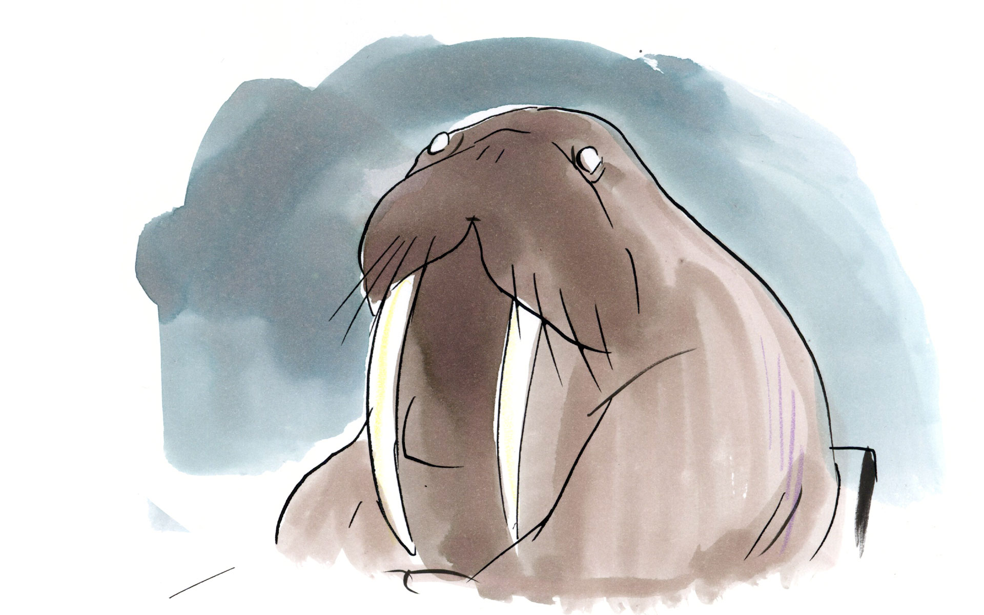 The Walrus Foundation