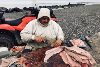 A man wearing a hooded sweatshirt and preparing fish outside.