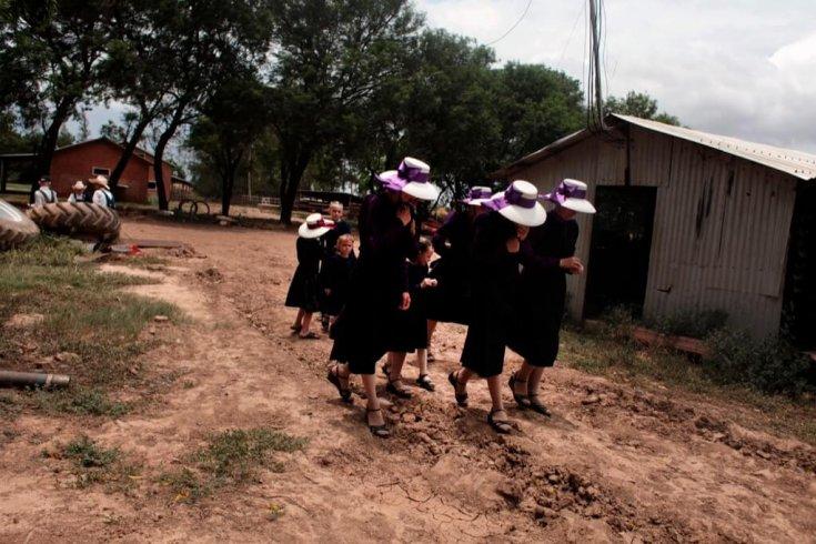 The Mennonites