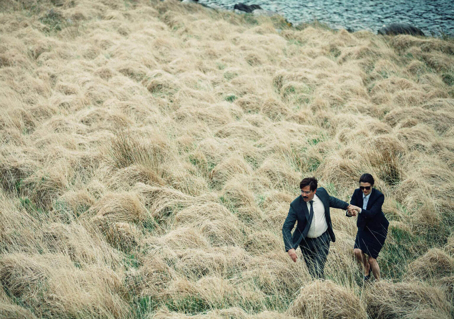 Video still from The Lobster