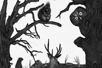Illustration by Adrienne Kammerer