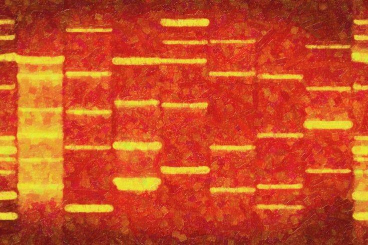 Courtney of DNA Art Online