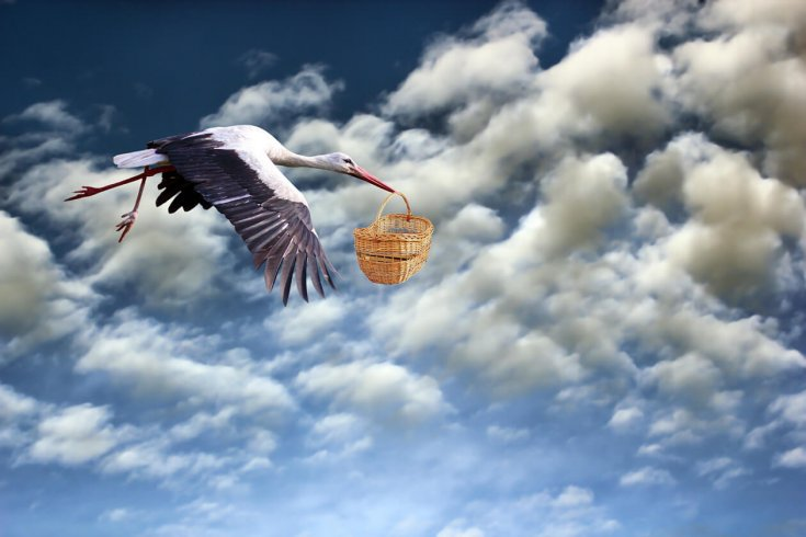 Stork flying through the air holding a basket