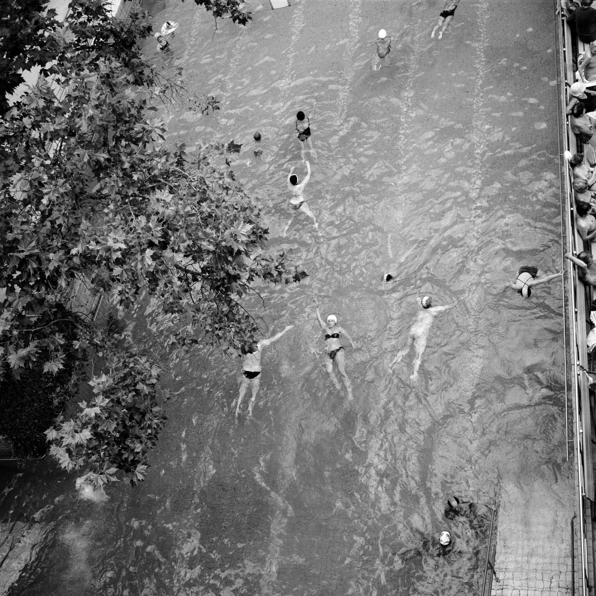 Photograph of Swimmers in a Budapest Pool