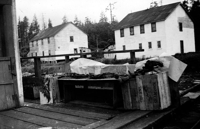 Image (I-61404) courtesy of the Royal BC Museum/BC Archives