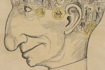 Phrenological Chart of the Head of the Country (Sir John A. Macdonald)/Library and Archives Canada, Acc. No. 1937-455