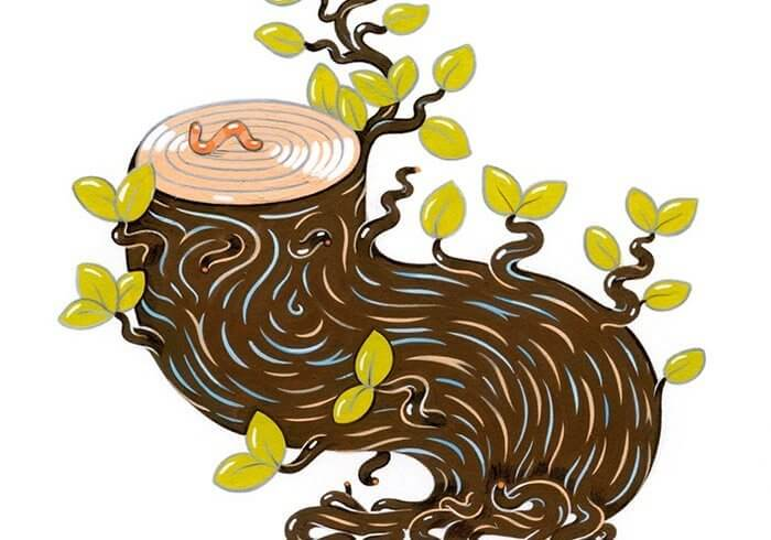 Illustration of a tree trunk with leaves and a worm