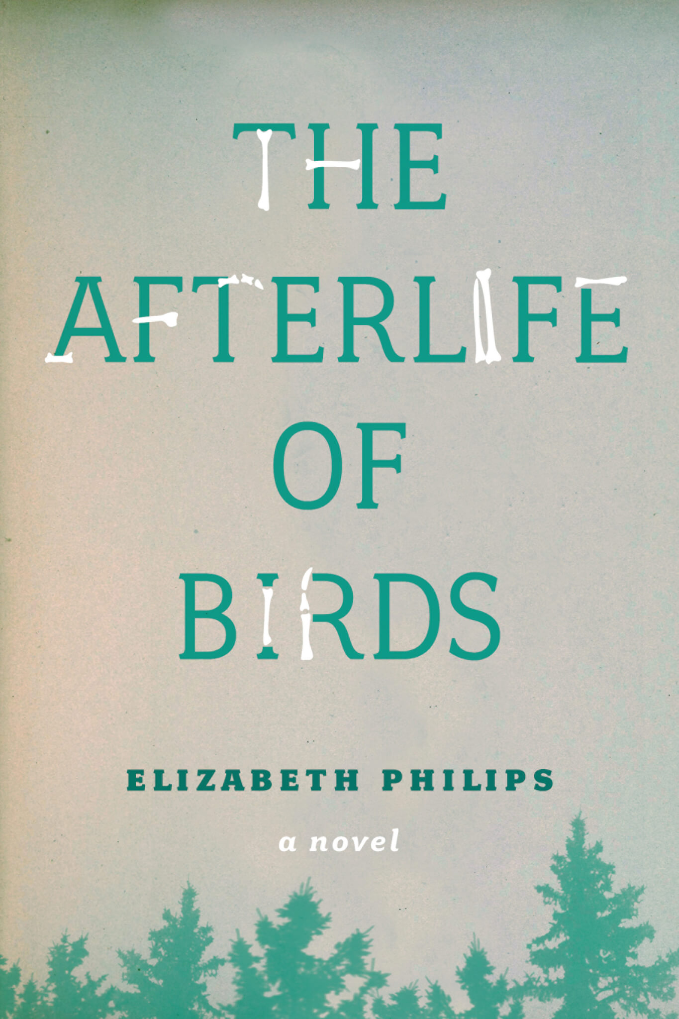 The Afterlife of Birds book jacket