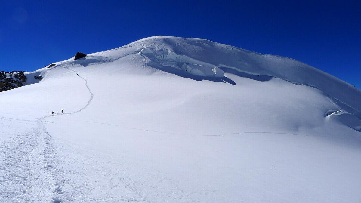 Mount Signalkuppe